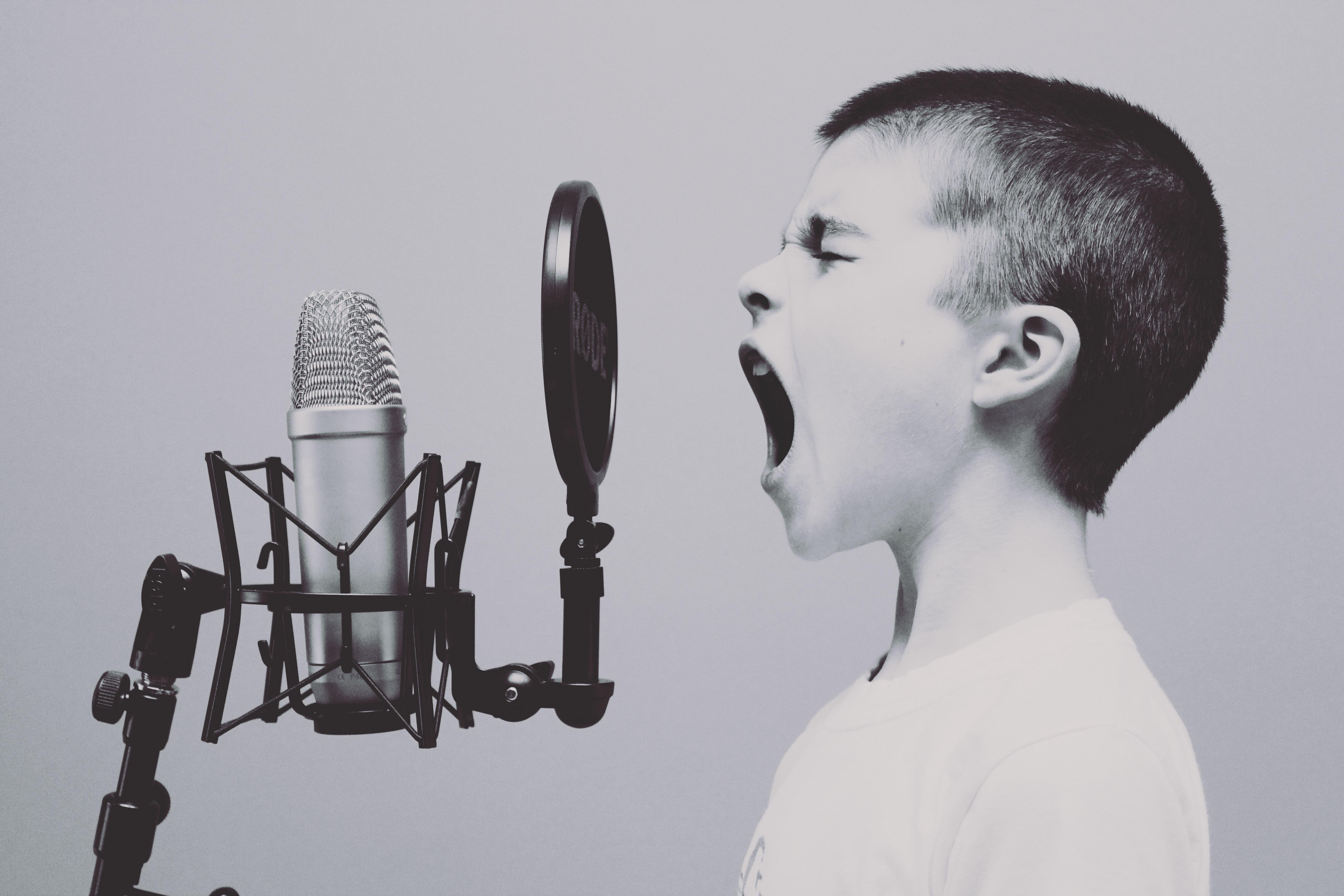 人の声の音域~周波数 Hz(ヘルツ)は?~