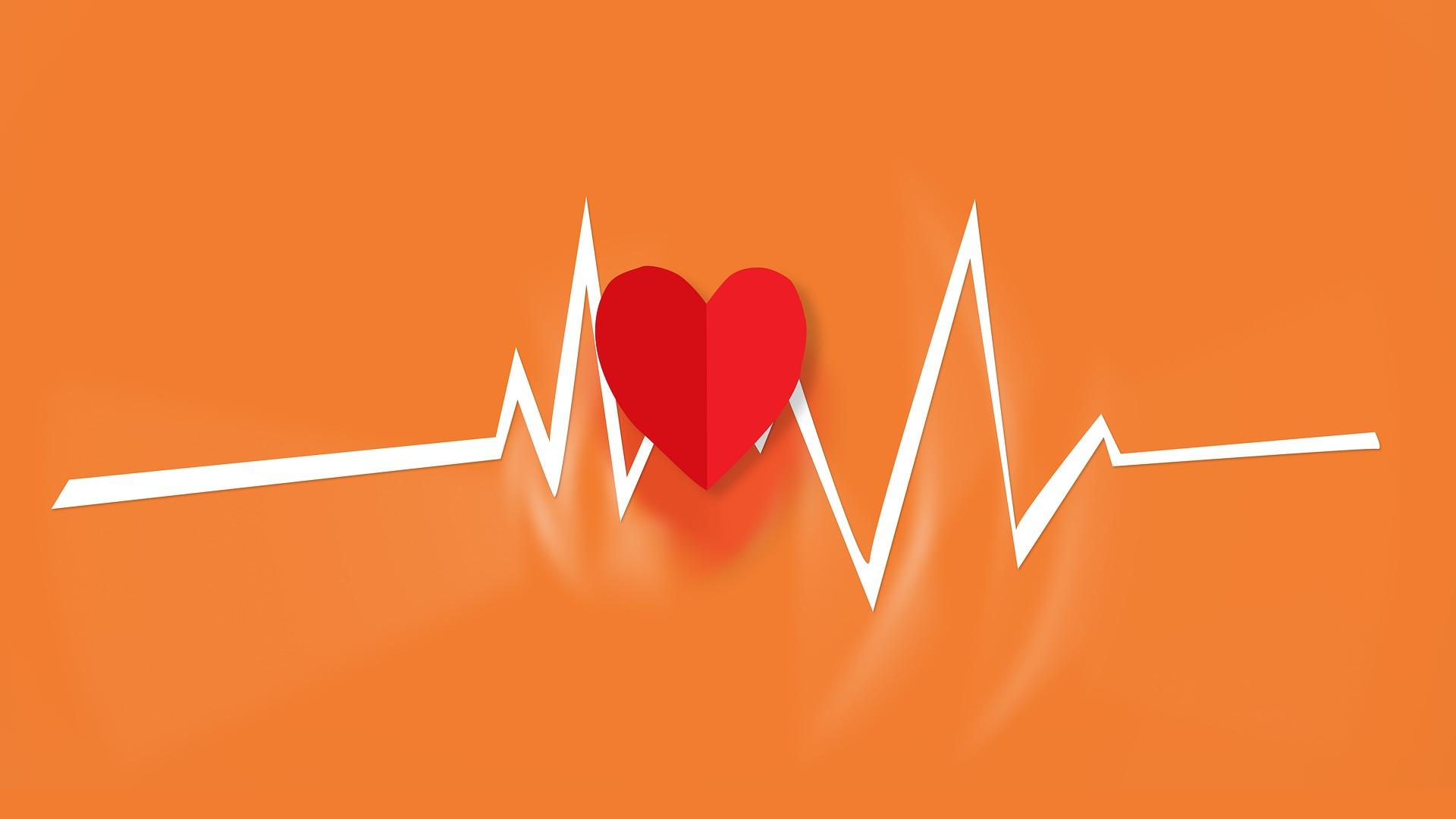 心臓の音 ドクンドクン